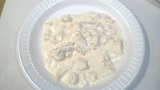 Review: MRE Chicken Alfredo with Pasta from Sopakco