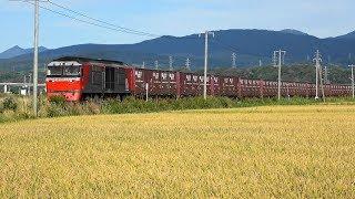 室蘭本線《黄金・長和》DF200牽引貨物列車・・・イモ臨も!!