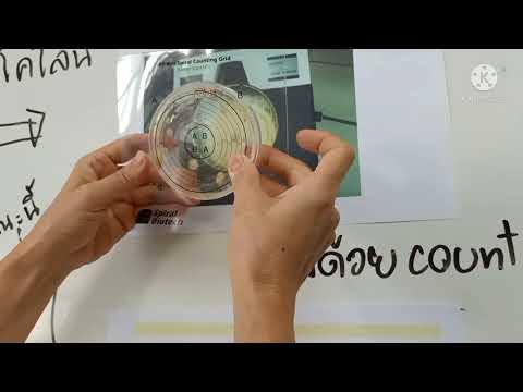 การนับโคโลนีและคำนวน CFU/g (Spiral plate technique)