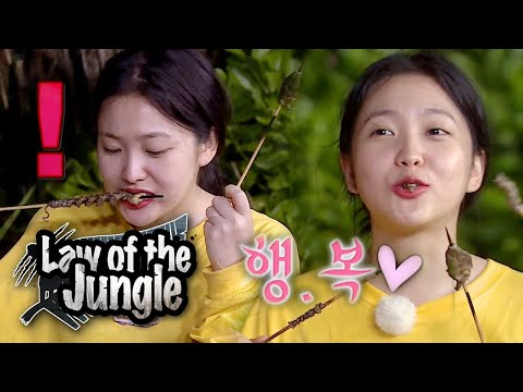 Yeri's First Meal In Jungle~!! The Octopus Skewers! [Law Of The Jungle Ep 369]