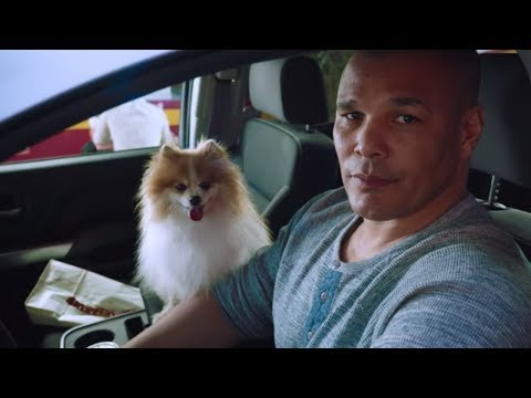 K9 | Navy Federal Credit Union Commercial