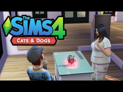 Heat in the Feet! - The Sims 4 Cats and Dogs - Part 22