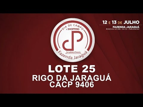 LOTE 25 (CACP 9406)