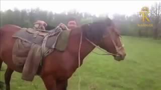 Йәш һыбайлы | Башкирский прикол