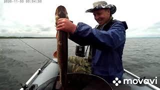 Ну очень профессиональная рыбалка на щуку