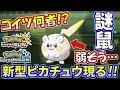【ポケモンUSUM】このピカチュウ強いのか?ネズミをナメまくった結果…【ウルトラサン/ウルトラムーン】