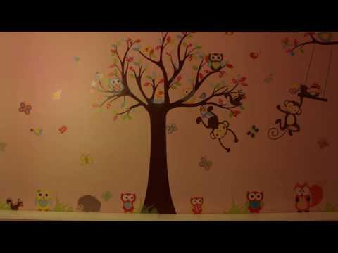 Kids room wall sticker monkey and owl zooyoo