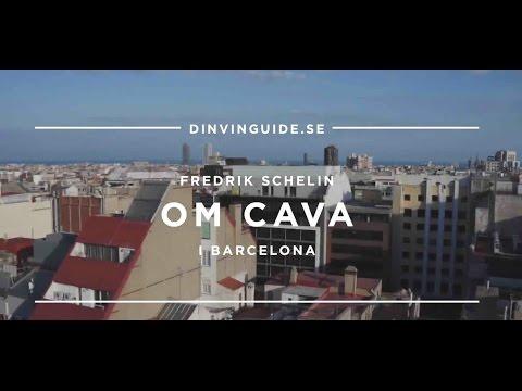 Fredrik Schelin i Barcelona berättar om det mousserande vinet Cava