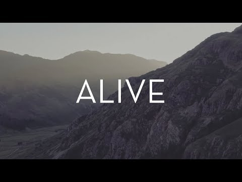 ALIVE | Freedom in Nature