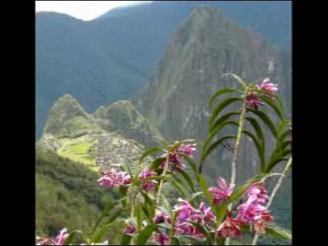 Orchids Of Peru Youtube