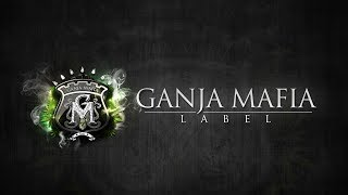 Download GANJA MAFIA 🎧 RADIO 24/7 MP3 song and Music Video