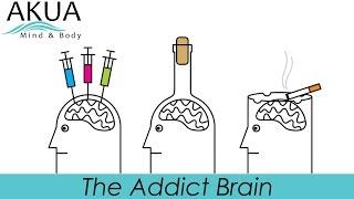 The Addict Brain - Science of Addiction