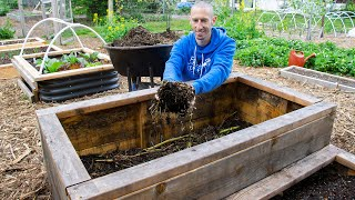 How to Fill a DËEP Raised Bed CHEAP and EASY, Backyard Gardening