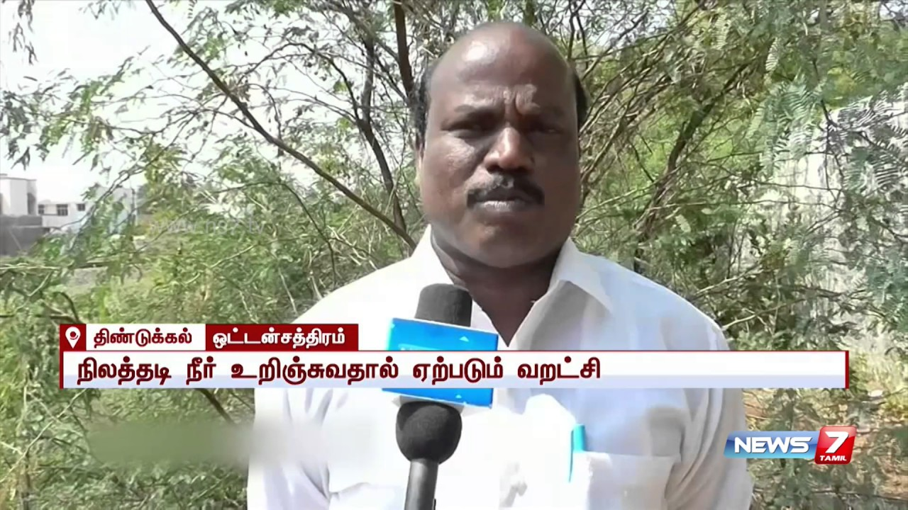 Babul trees cause decrease in groud water level at Dindugal | News7 Tamil