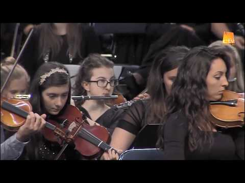 Orchestra -