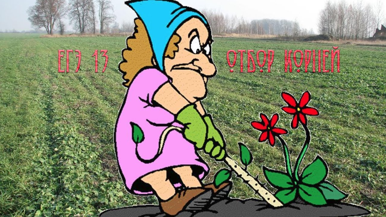 том, что картинки анимации юмор огород и мы биография