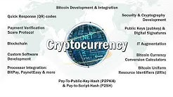 Bitcoin Software Development | Bitcoin API Integration | Bitcoin Application Development