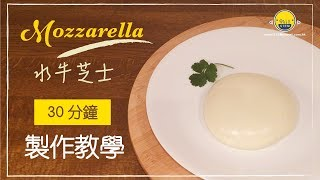 【手工芝士】30分鐘 Mozzarella 水牛芝士 ????