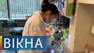 Коронавирус не сбавляет обороты Обзор пандемии в мире Вікна Новини