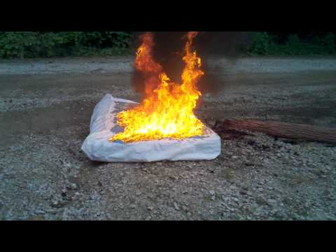 Bed Bug Infested Mattress Set On Fire