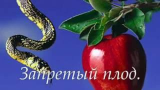 Запретный плод...