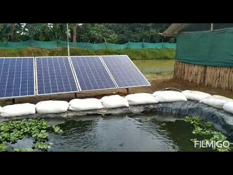 Begaining time Himalaya integrated farm look like