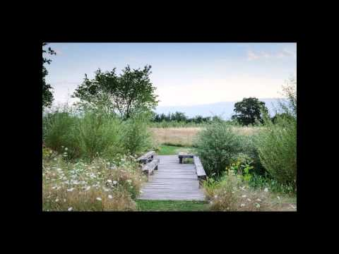 ART OF THE GARDEN: Dan Pearson, The Garden as Vision