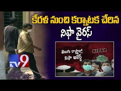 NIFA virus enters Karnataka from Kerala - TV9