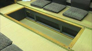 JR東日本 お座敷列車「華」で行く【夜の貨物線の旅】 485系 車内 畳の上下動作
