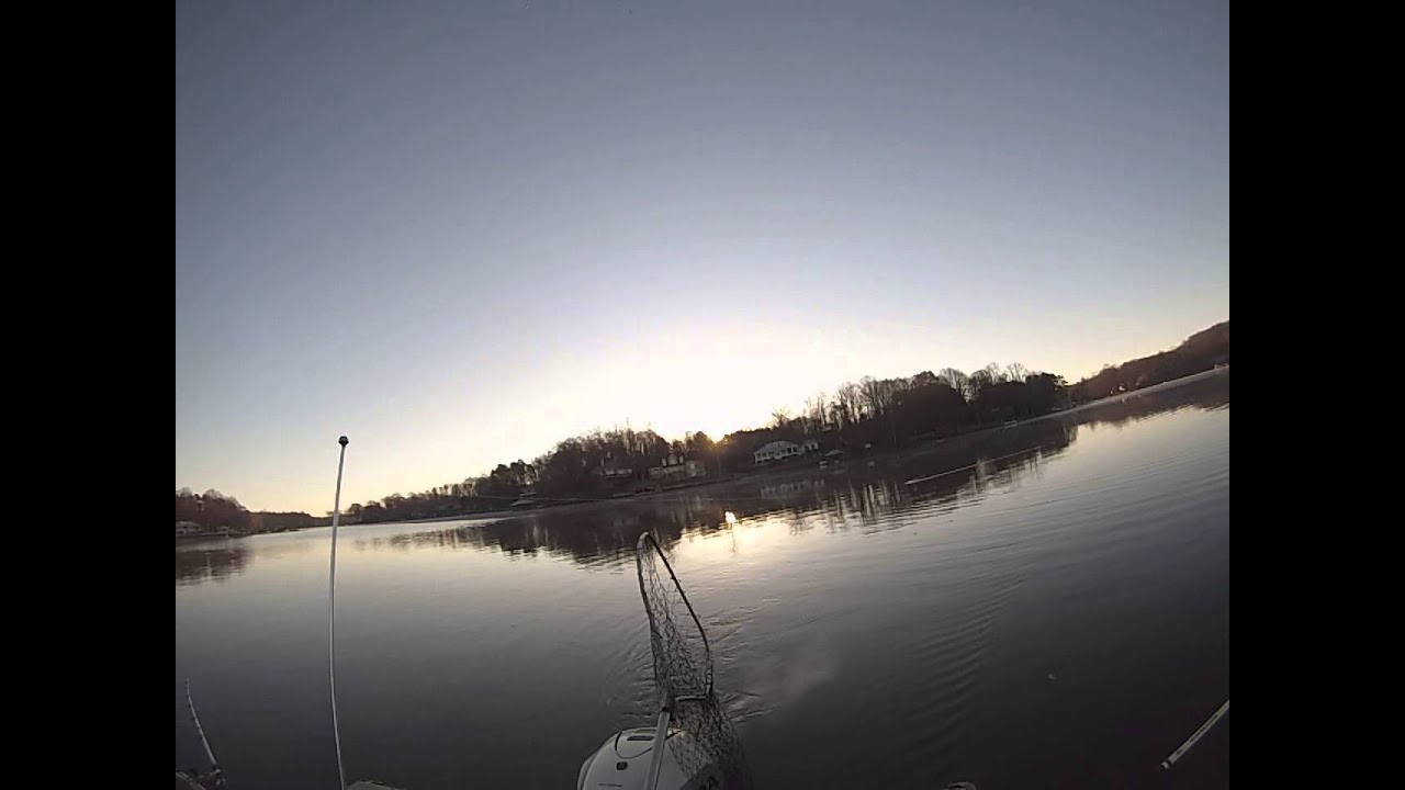 Striper fishing lake norman