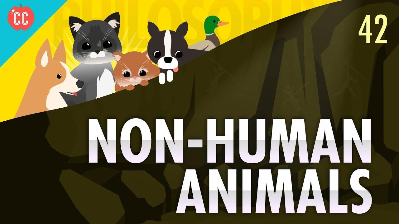 Non-Human Animals: Crash Course Philosophy #42