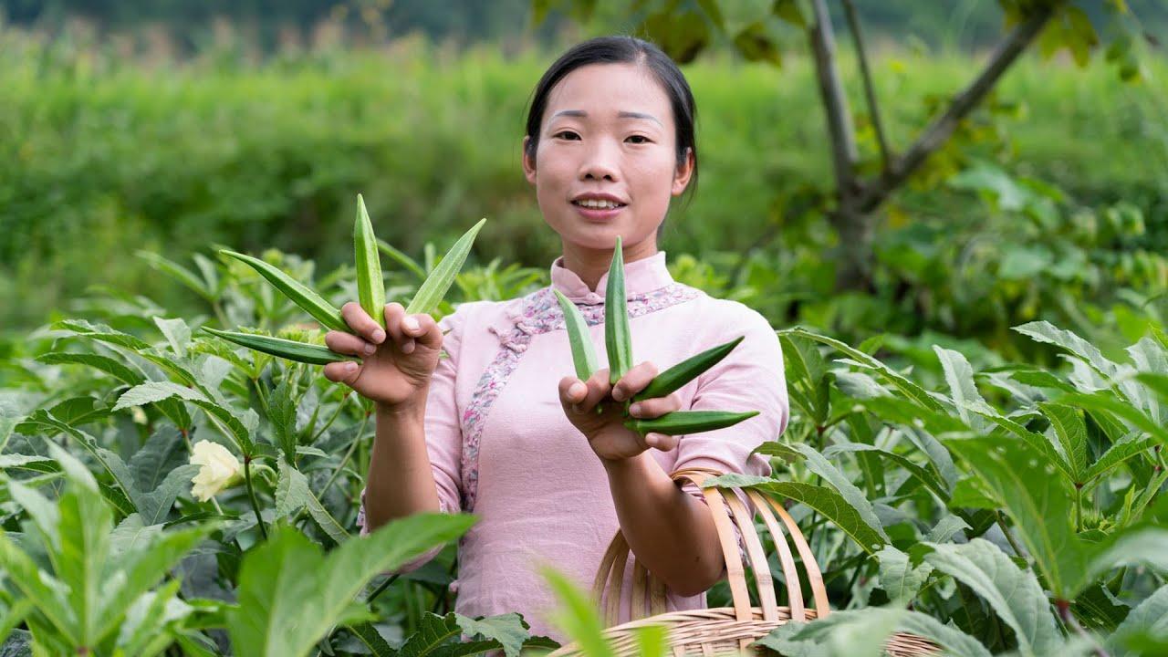 一籃秋葵 一桌菜,在配上酸泡果,美味極了 | Chinese food made from green okra | 秋葵 美食 | 野小妹wild girl