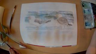 Aquarell Möwen am Strand Watercolor gulls on the beach speed painting