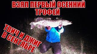Вот это трофей Две приманки которые спасли рыбалку Ловля щуки и окуня в сентябре