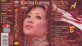 Download Lagu Kucing Garong / Erna Sari mp3