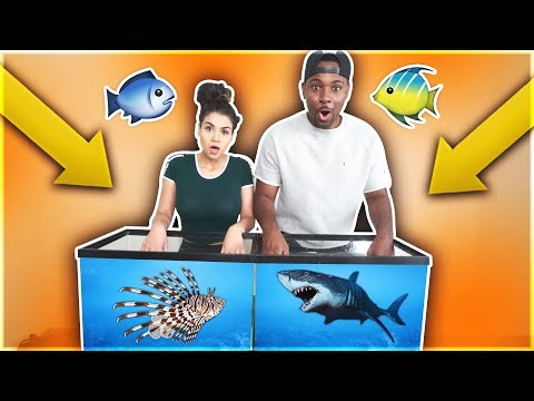 WHAT'S IN THE BOX CHALLENGE - UNDERWATER EDITION OCEAN ANIMALS!!
