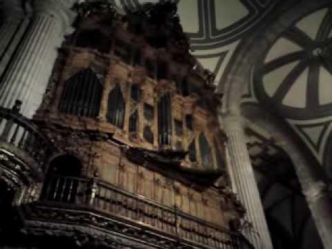 Organo del Evangelio, Catedral Metropolitana, Doct...