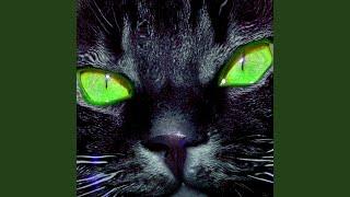 Meow (Miss Sunshine Remix)
