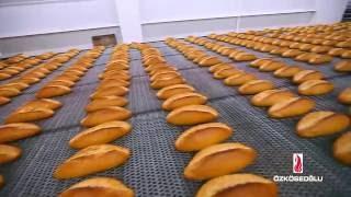 samsun tam otomatik ekmek hattı