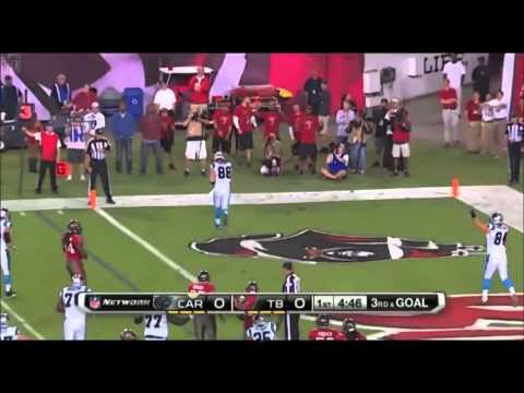 Carolina Panthers 2013-14 Highlights (Thunderstruck)