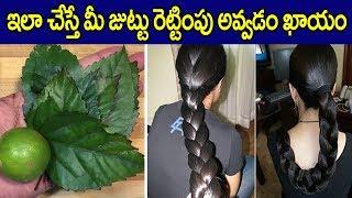 మీ జుట్టు ఫాస్ట్ గా పెరగాలంటే I Hair Loss Tips in Telugu I Hair Growth Tips I Everything in Telugu