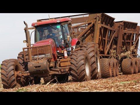 Landwirtschaft in Südamerika