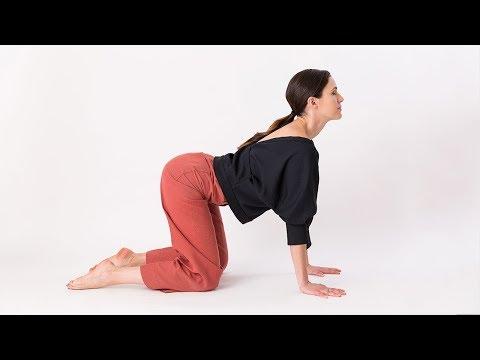 Cat-Cow Yoga Pose - Yoga With Adriene