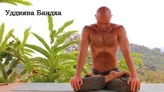 Йога для начинающих. Уддияна Бандха.