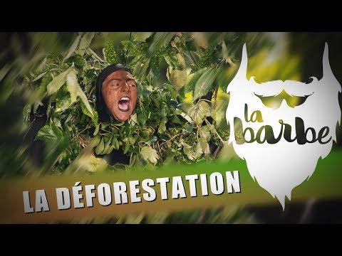 LA DÉFORESTATION - LA BARBE