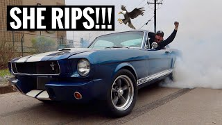 homepage tile video photo for Pushing the 1965 Mustang Fastback Till its Breaking Point!