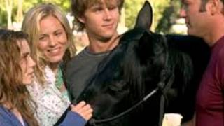 Video My Top 10 Fave Horse Movies download MP3, 3GP, MP4, WEBM, AVI, FLV September 2018