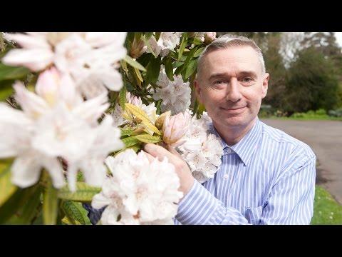 Dermot O'Neill visits The National Botanic Garden
