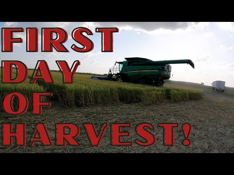 Download First Day of Harvest 2021!