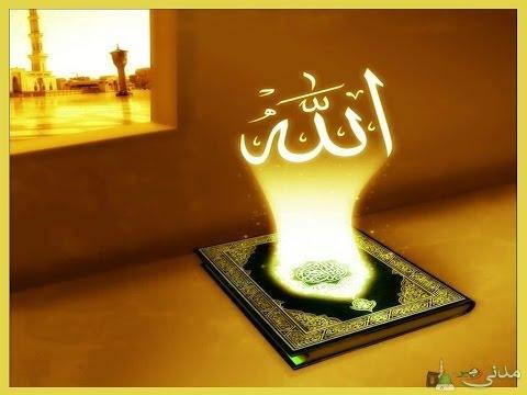 quran with dari translation pdf